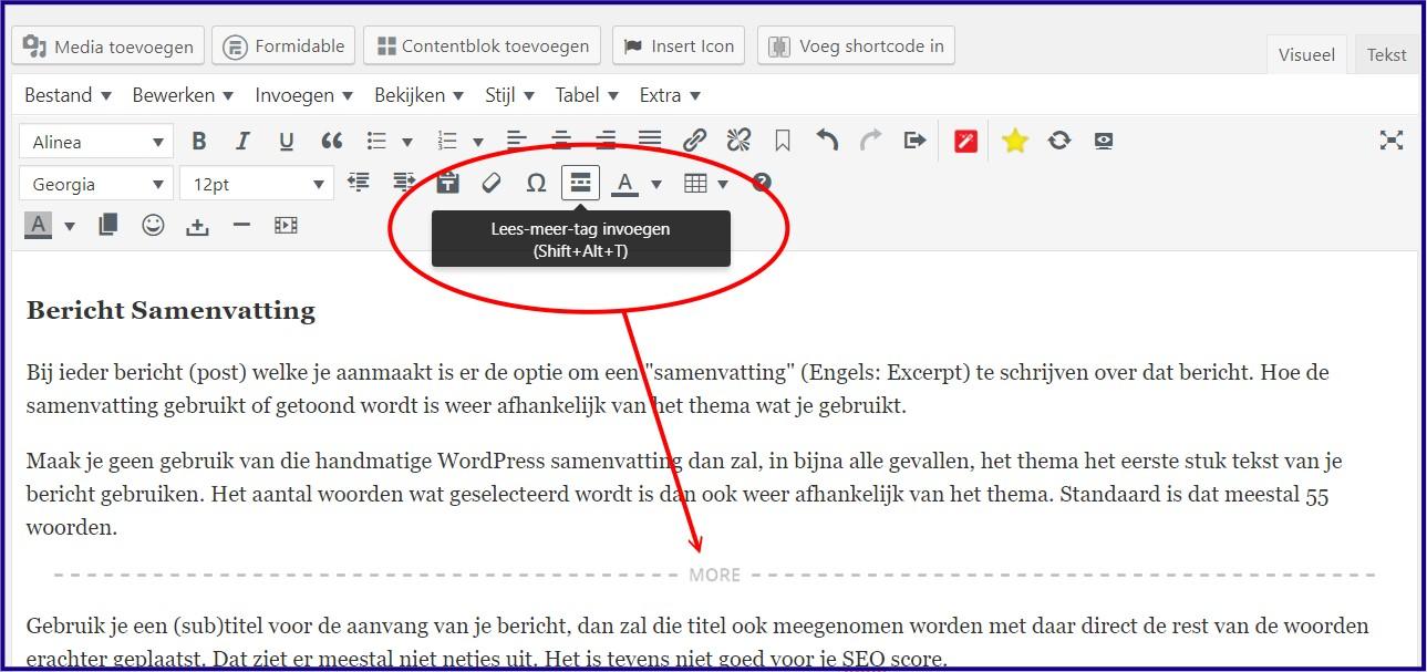 WordPress Lees Meer Tag