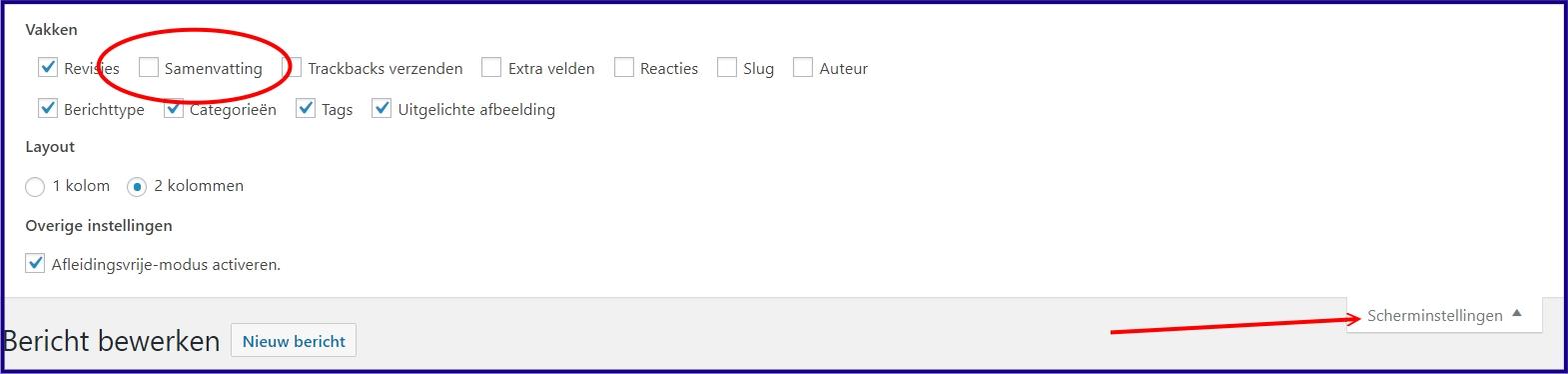 WordPress Bericht Samenvatting Aanzetten