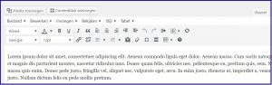 WordPress TinyMCE Editor