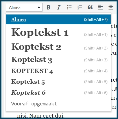 WordPress Alinea & Kopteksten
