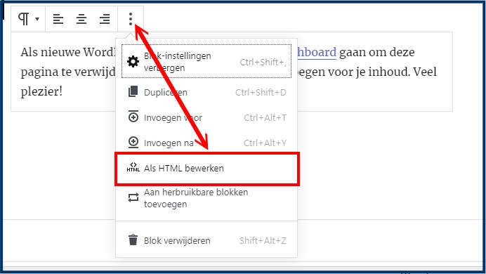 Gutenberg Paragraaf HTML Editor