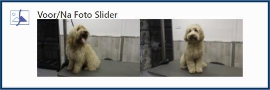 Voor Na Foto Slider Element op pagina-editor