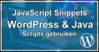 WordPress JavaScript Snippets