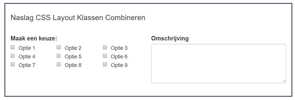 Voorbeeld - CSS Layout klassen Combineren