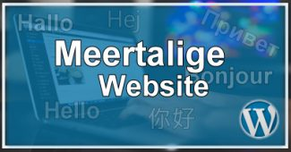 Meertalige Website