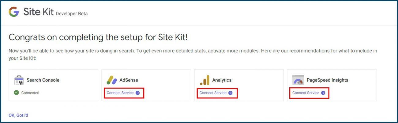 Google Site Kit Diensten